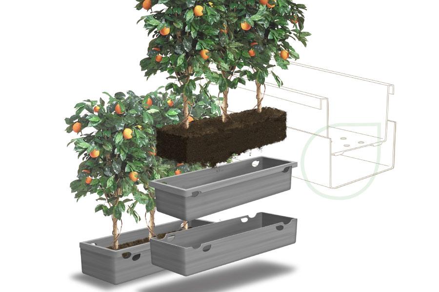 urban-plant-retouch